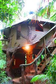 The 25 Best Treehouse Hotel Ideas On Pinterest  Amazing Tree Treehouse Accommodation