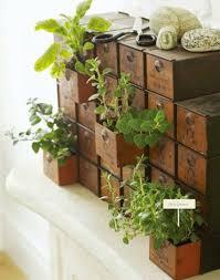 how to make an indoor herb garden.  Herb Drawer Indoor Herb Garden  Fun And Easy Ideas For How To Make An A