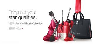 luxurious makeup brush set
