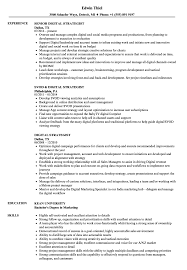Digital Strategist Resume Digital Strategist Resume Samples Velvet Jobs