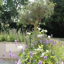 Small Picture Interior Designers Garden Designs Bath Bristol Woodhouse Law
