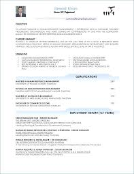 Project Manager Resume Examples Extraordinary Project Management Resume Samples Unique Technical Project Manager
