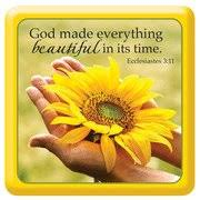 Image result for pictures of beautiful things God made