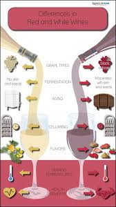 Comparing Differences In Red And White Wines Lovetoknow