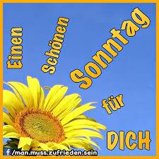 Einen Schönen Sonntag Für Dich Sonntag Bild 24740