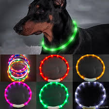 Led Dog Box Lights 2019 Cut Usb Charge Dog Training Collar Led Outdoor Luminous Charger Pet Dog Collars Light Adjustable Led Flashing Dog Collar Gift Box Packing From