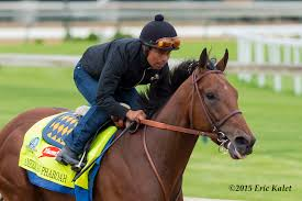 Training For The Triple Crown: An Historical Perspective - Horse ...