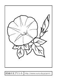アサガオ主線黒夏の花無料塗り絵イラストぬりえプリント