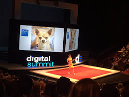 """Ashley Zeckman on Twitter: """"Let's tell the true story of our pets.  @annhandley #dsmpls… """""""