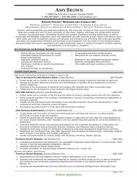 Senior Project Manager Resume Example Best of Project Manager Resume Templates Lovely Sr Project Manager R RS