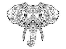 Afrikaanse Olifant Vectoren Illustraties En Clipart 123rf