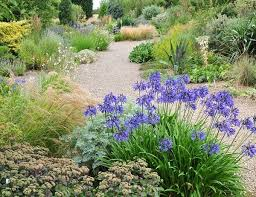 Small Picture Fancy Gravel Garden Design H61 In Home Design Wallpaper with