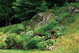 to enlarge a rock garden in the hills larry decker
