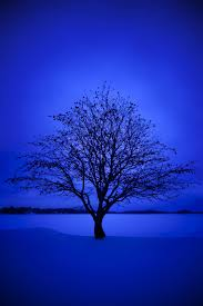 Blue wallpapers, Blue aesthetic ...