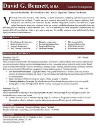 mis manager resume executive summary template doc template