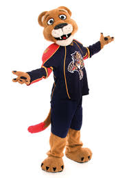 Image result for florida panthers cartoon
