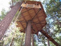 How to Make a Tree House Step By Step