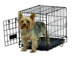 small dog crate be good deco ii dog crates petco  right