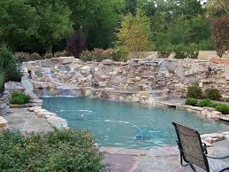 Natural Swimming Pools by ECOsmarte Planet Friendly Inc