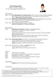 sample resume for electrical engineer in resume sample resume for electrical engineer in 4 quality assurance manager resume samples examples installer resume
