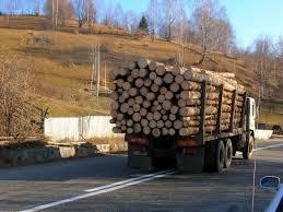 Manipulare ordinară marca Antena 3: de fapt, elvețienii ne fură lemnul