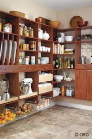 Storage For Kitchen Cupboards Pantryspace 2jpg