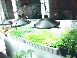 indoor greenhouse diy mini indoor greenhouse mini indoor greenhouse building a build mini indoor greenhouse with light mini indoor greenhouse diy indoor
