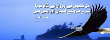 on allama iqbal in english for kids essay on allama iqbal in english