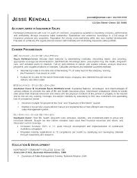 Resumes Titles Best Resume Titles Examples Title Unique Good For Resumes Custom