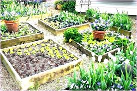 raised bed garden layout garden layout garden layout plans vegetable garden bed design raised bed vegetable garden layout plans raised raised bed garden