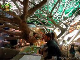 Tree House Restaurante And Cafe Monteverde Costa Rica So Wish I Treehouse Monteverde Costa Rica