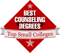 top 25 small colleges for a counseling degree best counseling about the author