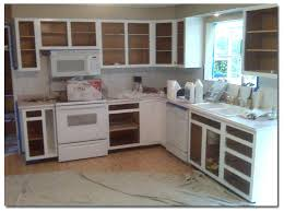 professional cabinet paint professional kitchen cabinet painting professional painters for kitchen cabinets professional kitchen cabinet painting