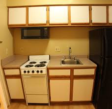 kitchen kitchen ideas cabinet designs for small spaces apartment