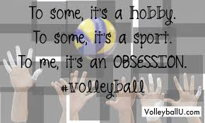 Volleyball Quotes Stunning Musely