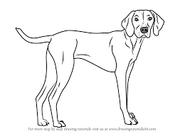 dogs drawings. Exellent Drawings For Dogs Drawings