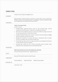 Cashier Job Description Resume Sample College Essay Topics Examples