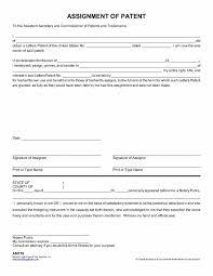 job analysis essay legal considerations