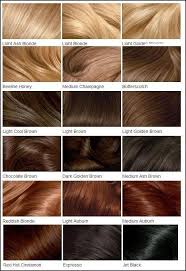 Garnier Color Naturals Shades Chart Clairols Hair Color Chart Different Blonde Brown Red Dark