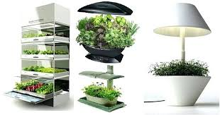 indoor kitchen herb garden most of us long for our personal kitchen gardens where we can grow