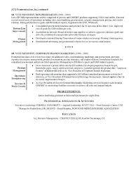 Executive Summary Resume Sample Executive Summary Resume Examples