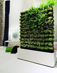 Vertical Herb Garden In Your Kitchen Vertical Gardening Greenmylife Anyone Can Garden Say Hello To The