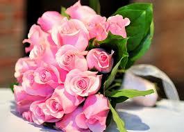 hd wallpaper pink rose flower bouquet