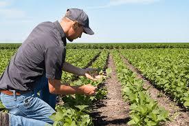 Farmers Auto Quote Virginia Farm Bureau Insurance Membership Serving All Virginians 97