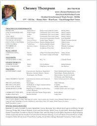 Template Cv English Arcgerontology Info