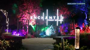 la canada flintridge s descanso gardens attracts visitors to forest of light display