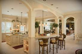 open kitchen living room designs. Kitchen:Wonderful Classic Open Kitchen With Arched Ceiling And Victorian Furniture The Best Living Room Designs