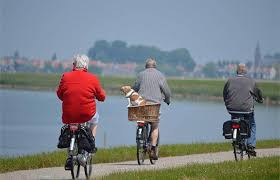 Aging Alone Doesn't Have to be Lonely | Blog | Forest Grove, Or