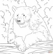 Small Picture Polar Bear Coloring Pages For Kids Page Getcoloringpagescom Bear