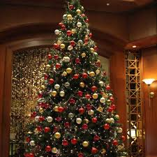 Should You Buy An Artificial Christmas Tree Or A Real Christmas TreeWhen Should You Buy A Christmas Tree